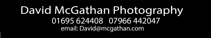 www.davidmcgathan.co.uk Logo